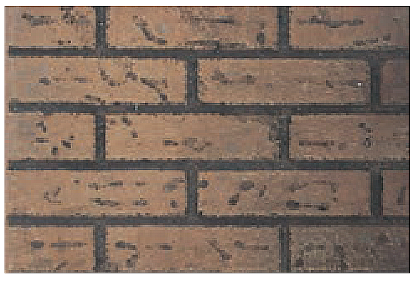 Empire Innsbrook Branded Brick Liner DVP26DF